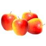 Apfel Shampion