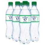 Bad Liebenwerda Mineralquellen Medium 6x0,5l