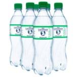 Bad Liebenwerda Mineralquellen Medium 6x0,5l
