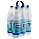 Bergquelle Mineralwasser Classic 6x1,5l