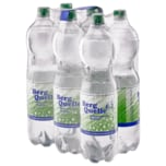 Bergquelle Mineralwasser Medium 6x1,5l