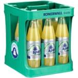 Römerwall Citrus-Grapefruit Iso Sport 12x0,75l