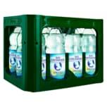 Bad Liebenwerda Mineralwasser spritzig + Citro 12x1l