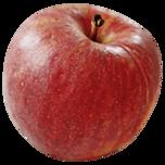 REWE Bio Apfel rot