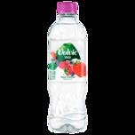 Volvic Rote Früchte 0,75l