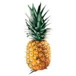 Ananas klein extra sweet