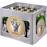 Carlsberg Elephant Beer 20x0,5l