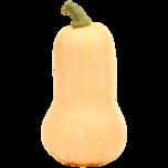 Speisekürbis Butternut