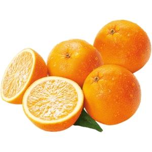 REWE Bio Orange 1kg Netz