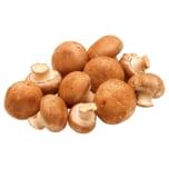 Champignons braun 1kg