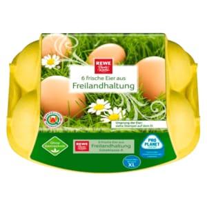 REWE Beste Wahl Eier Freilandhaltung Klasse M-L 6 Stück