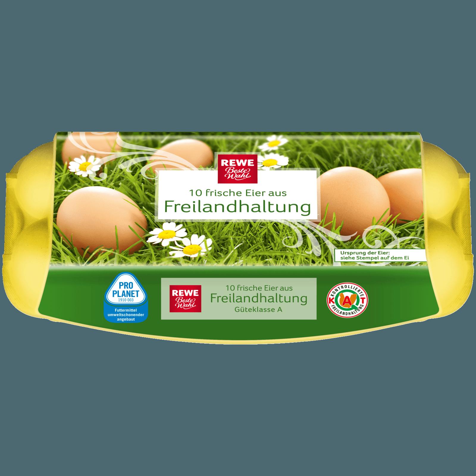 REWE Beste Wahl Eier Freilandhaltung Klasse M-L 10 Stück