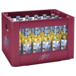 Mixery Nastrov Flavour iced blue 24x0,33l