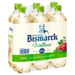 Fürst Bismarck Wellness Trauben & Kräuter 6x0,5l
