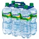 Carolinen Medium natürliches Mineralwasser 6x1l
