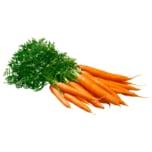 Karottenbund mit Grün