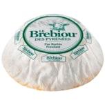 Le Brebiou des Pyrénées