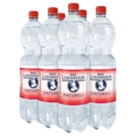 Bad Liebenwerda Mineralwasser naturell 6x1,5l