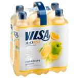 Vilsa H2Obst Iso-Grape 6x0,75l