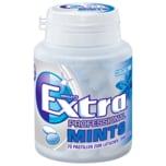 Extra Mints Professional Classic Mint 70 Mints