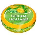 Campina Gouda Holland Jung Schnittkäse