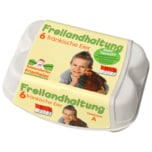 Kasendorfer Frischeier Freilandhaltung 6 Stück