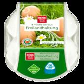REWE Beste Wahl Frische Eier aus Freilandhaltung 4 Stück