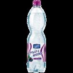 Ileburger Sachsenquelle Fruit & Water Brombeere 1,5l