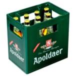 Apoldaer Radler 11x0,5l