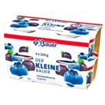 Bauer Fruchtjoghurt Heidelbeere-Cassis 4x100g