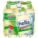 Hella Wellness Birne-Mango 6x0,75l