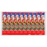 E + G Schokolade am Stiel Weihnachtsmann 10x15g