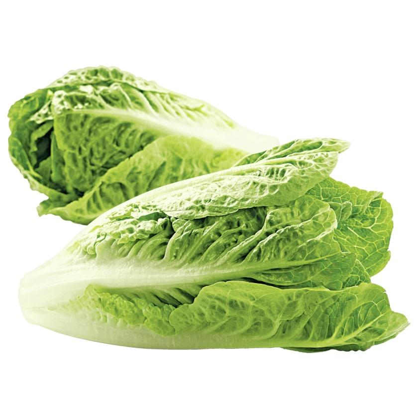 Bio Salat Romanaherzen 2st