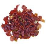 REWE Regional Eichblattsalat rot