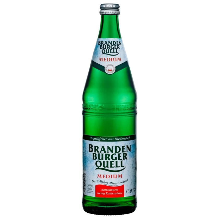 Brandenburger Quell Mineralwasser Medium 0,75l