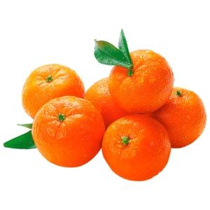 Mandarinen 1kg Netz
