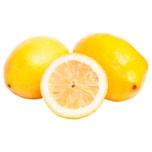 Zitronen 500g Netz