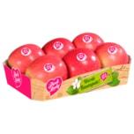 Apfel Pink Lady 1kg