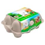 Owi-Ei Bio Eier 6 Stück