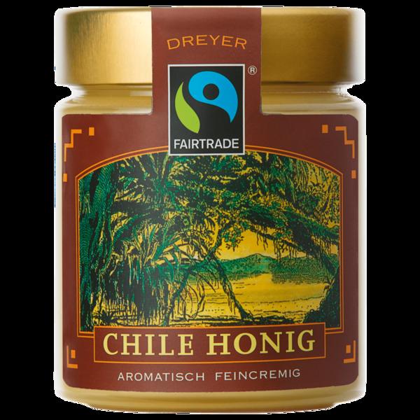 Dreyer Chile Honig 500g