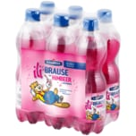 Ileburger Himbeer-Brause 6x0,5l