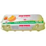 Teichweiden Eier Freilandhaltung 10 Stück
