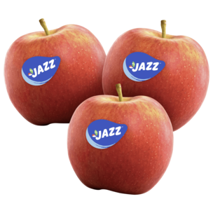 Apfel Jazz Scifresh 930g