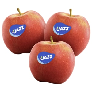 Apfel rot Jazz Scifresh
