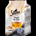 Sheba Katzenfutter Fresh & Fine in Sauce Geflügel-Variation 6x50g