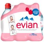 Evian Mineralwasser Naturell 6x0,75l