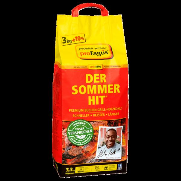 Profagus Der Sommerhit Grill-Holzkohle 3,3kg