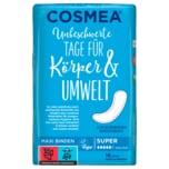 Cosmea Binden super 16 Stück