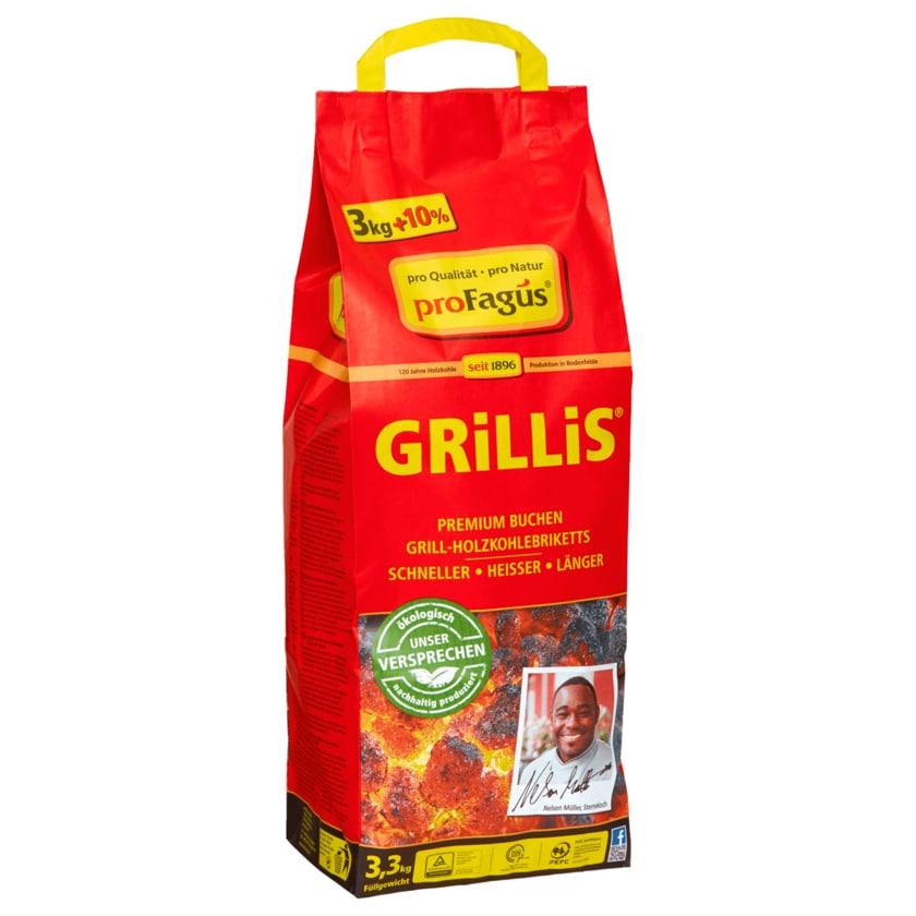 Profagus Grill-Holzkohlebriketts Grillis 3,3kg