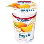 Bauer Müsli-Fruchtjoghurt Mango-Müsli 250g
